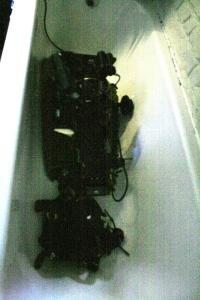 beast in the bath